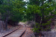 rusty snaking railway